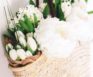 aesthetic, flowers, and spring image