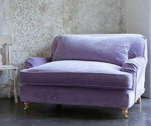 purple, chair, and couch image