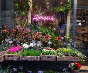 amour, flowers, and neon image
