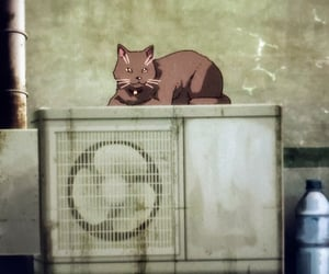 animal, anime, and cat image