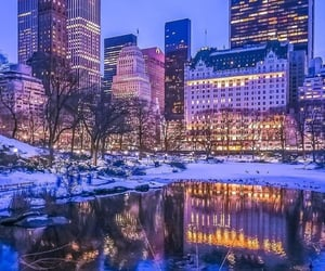 Central Park and new york image