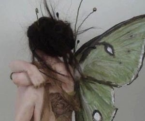 aesthetic, faerie, and naturecore image