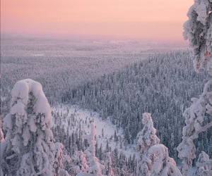 fantasy, finland, and forest image