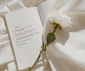 aesthetic, book, and rose image