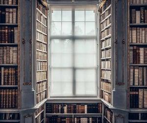 biblioteca, bibliotheque, and book image