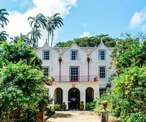 architecture, distillery, and barbados image