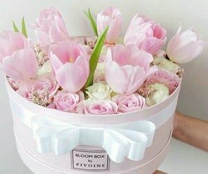 flowers, pink, and inspiration image
