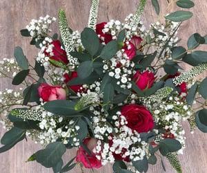 bouquet, eucalyptus, and gypsophila image