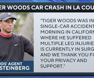 goat, golf, and tiger woods image