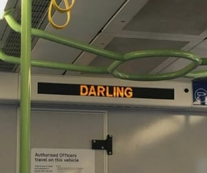 bus, darling, and stories image