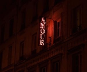 aesthetic, amour, and dark image