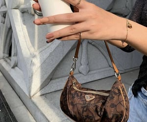 bags, fashionista, and mode image