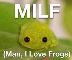 frog, funny, and milf image