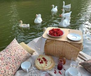 picnic, food, and nature image