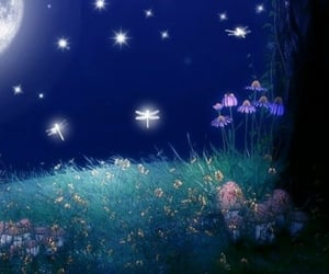 fairy, flowers, and moon image