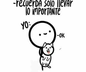 familia, gato, and felicidad image