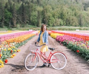 bike and tulips image