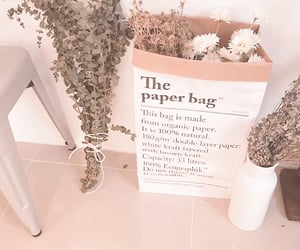 aesthetic, beige, and plants image