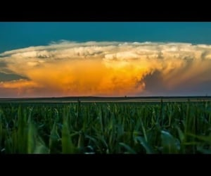 corn, storms, and time lapse image