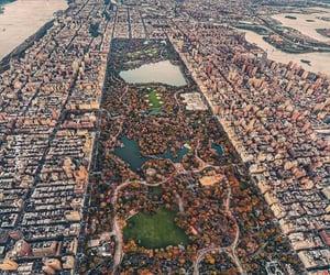 new york central park image