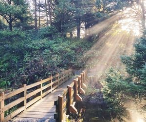 bridge, creek, and sunset image