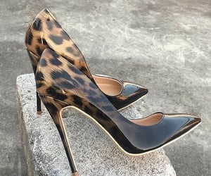 heels, Leo, and shoes image