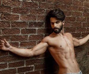 celebrities, bollywood gossips, and shahid kapoor family image
