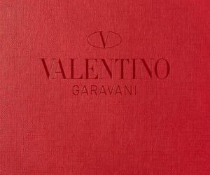aesthetic, designer, and maison valentino image