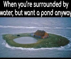 humor, comedy, and Island image