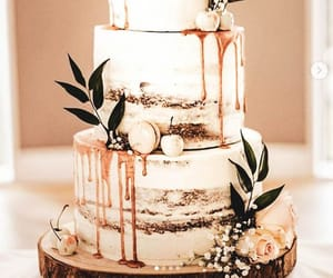 cake, naked, and rustic image