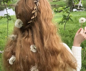 dandelions, leaves, and faceless image