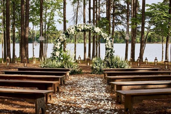 decoration, forest, and venue image
