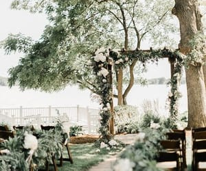 decoration, wedding, and forest image