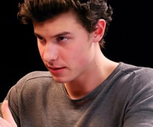 shawn mendes icon image