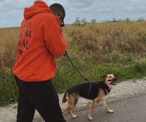 dog, boy, and walk image