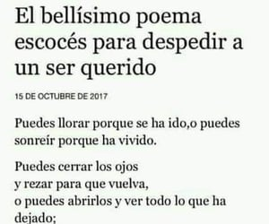 muerte, vida, and poema image