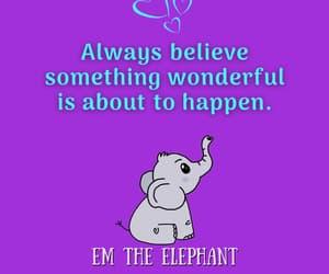 elephant, cute, and inspiration image