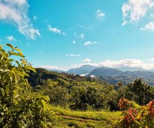 blue sky, green, and landscape image