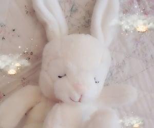 rabbit, bunny, and kawaii image