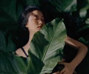 leaf, kpop, and photoshoot image