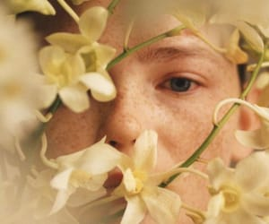boy, flowers, and freckles image