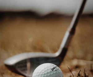 golf and sport image
