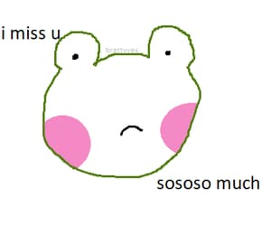 bunny, frog, and meme image