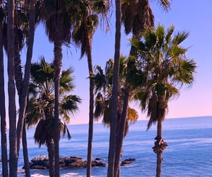 beaches, cali, and ocean image