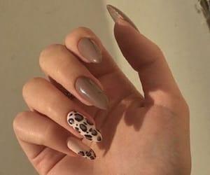animal print, nails, and fashion image