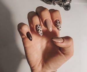 animal print, nails, and Nude image