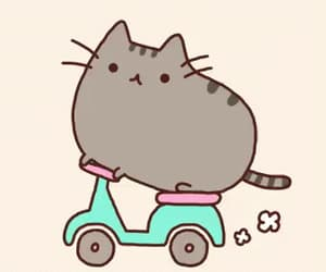 funny, gif, and pusheen cat image