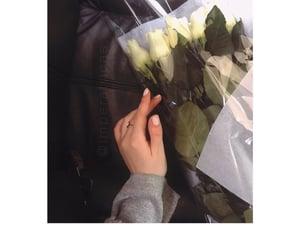beautiful, flowers, and bosanka image