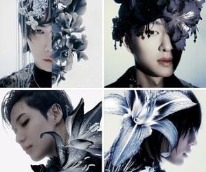 key, Minho, and Onew image
