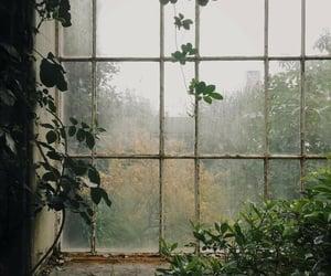 window, aesthetic, and green image